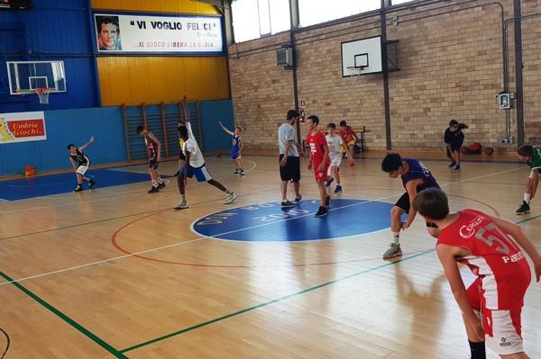 basket db
